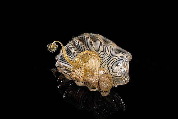 Dale Chihuly, Cream Beige Seaform Set with Jasper Black Lip Wraps 97.2715.s5 1997, Glass